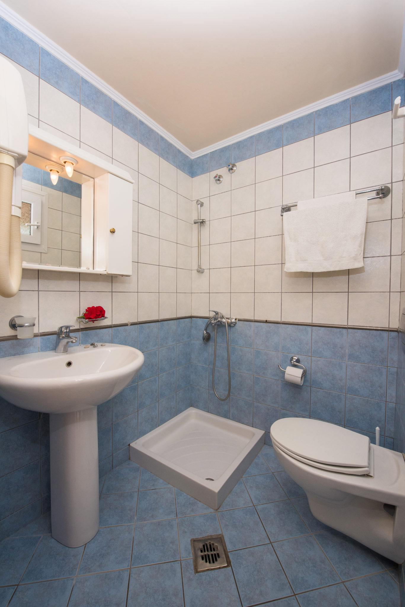 Dominoes standart double room -bathroom - Cheap accommodation.